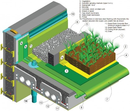 icf_green_roof